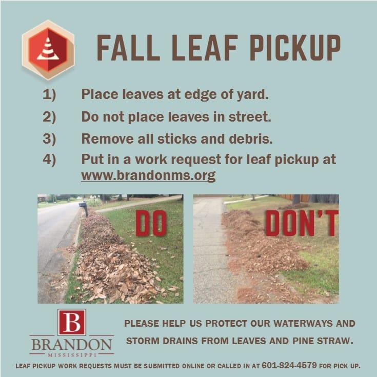 leaf-pickup