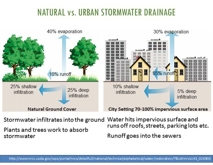 Stormwater City Of Brandon Mississippi